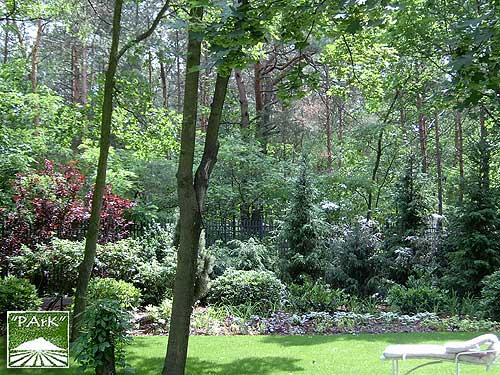 Ogród przy rezydencji w Konstancinie 2