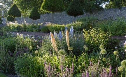Inspiracje - Ogród Norfolk - zdjęcie 3