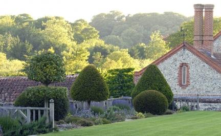 Inspiracje - Ogród Norfolk - zdjęcie 4
