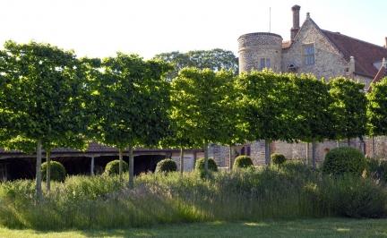 Inspiracje - Ogród Norfolk - zdjęcie 7